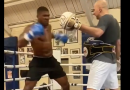 anthony joshua training video